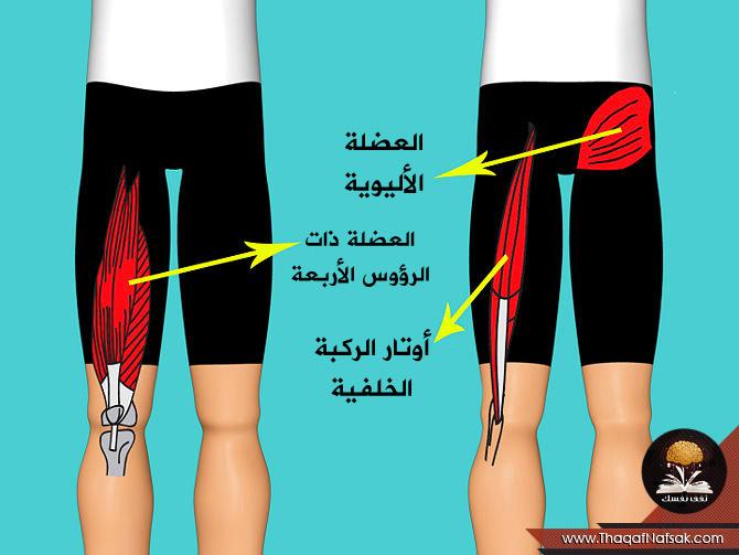 صورة تمارين تقوية الركبة , افضل تمارين لتقوية الركبة