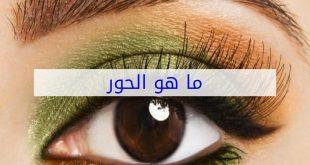 ما هو حور العين , ماذا يعني حور العين ؟