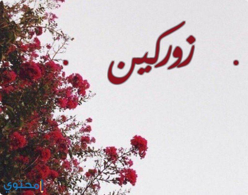 صورة اسم بحرف ز , اجمل اسماء بحرف ز