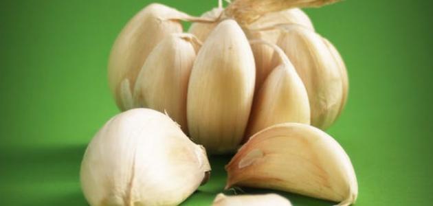 صورة فوائد ثوم الذكر , اهم فوائد الثوم للبعض