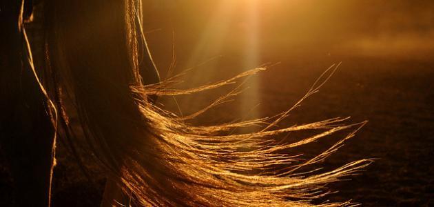 صورة تفسير رؤيا الشعر , ماذا يعني رؤية الشعر في المنام