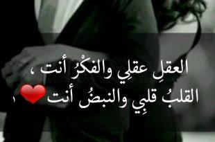 صورة جملة حب للحبيب , شاهد اروع الجملة حب من اجل الحبيب