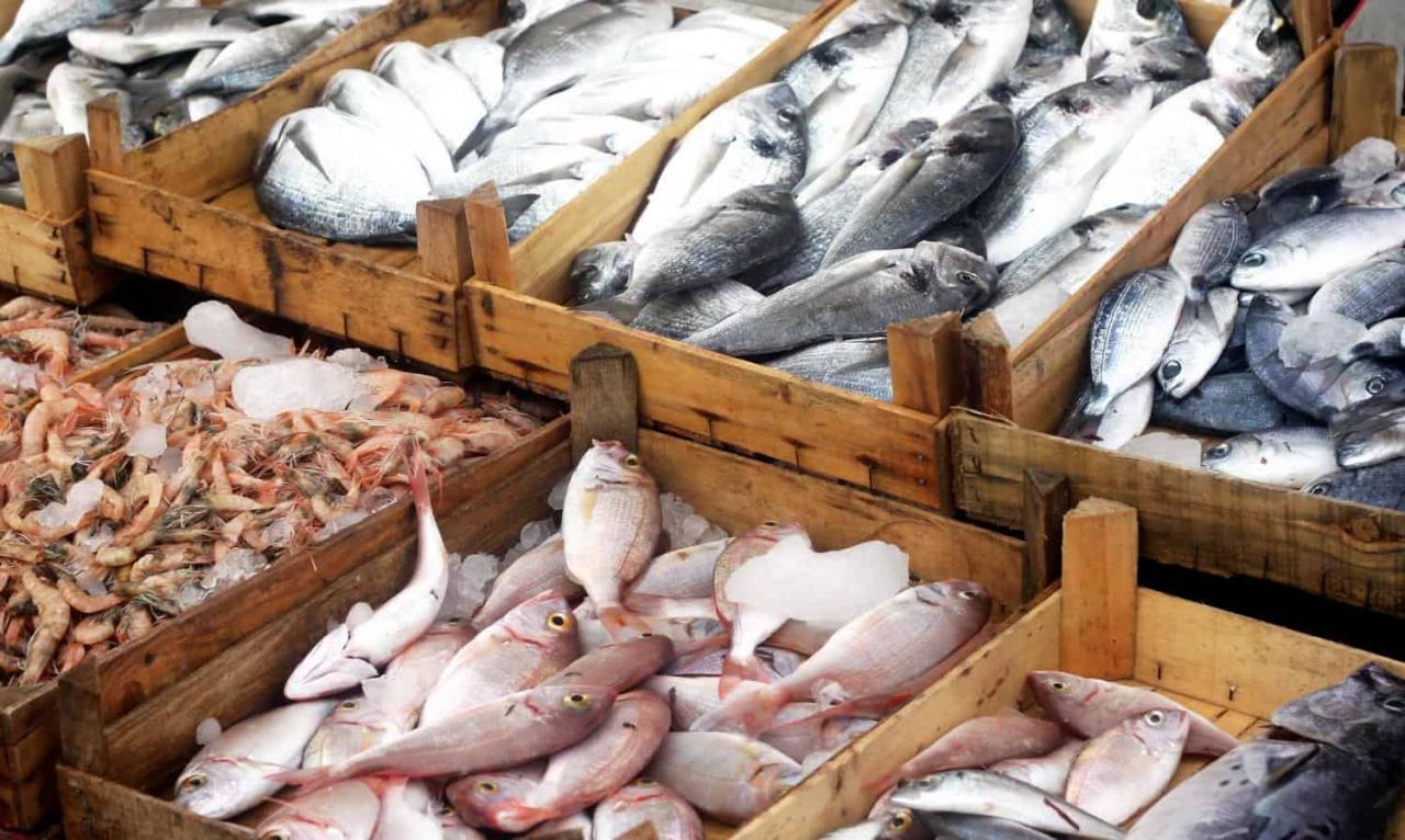 صورة السمك الابيض في المنام , تعرف على تفسير حلم السمك في المنام