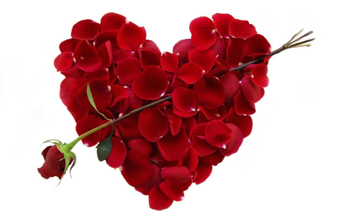 صورة معايدات عيد الحب , شاهد اجمل الصور لافضل يوم في سنة