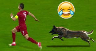 صور لقطات مضحكة في كرة القدم , شاهد اجمل الصور لكرة القدم