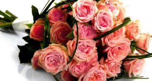 صورة باقات ورد للمريض , شاهد اجمل صور الورود للمريض