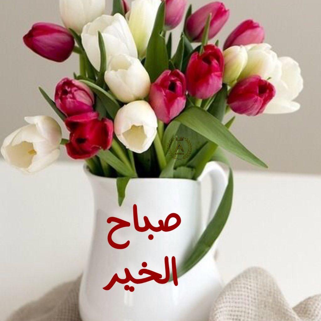 احلى كلام صباح الخير للجميع شاهد اجمل كلام عن الصباح الخير حركات