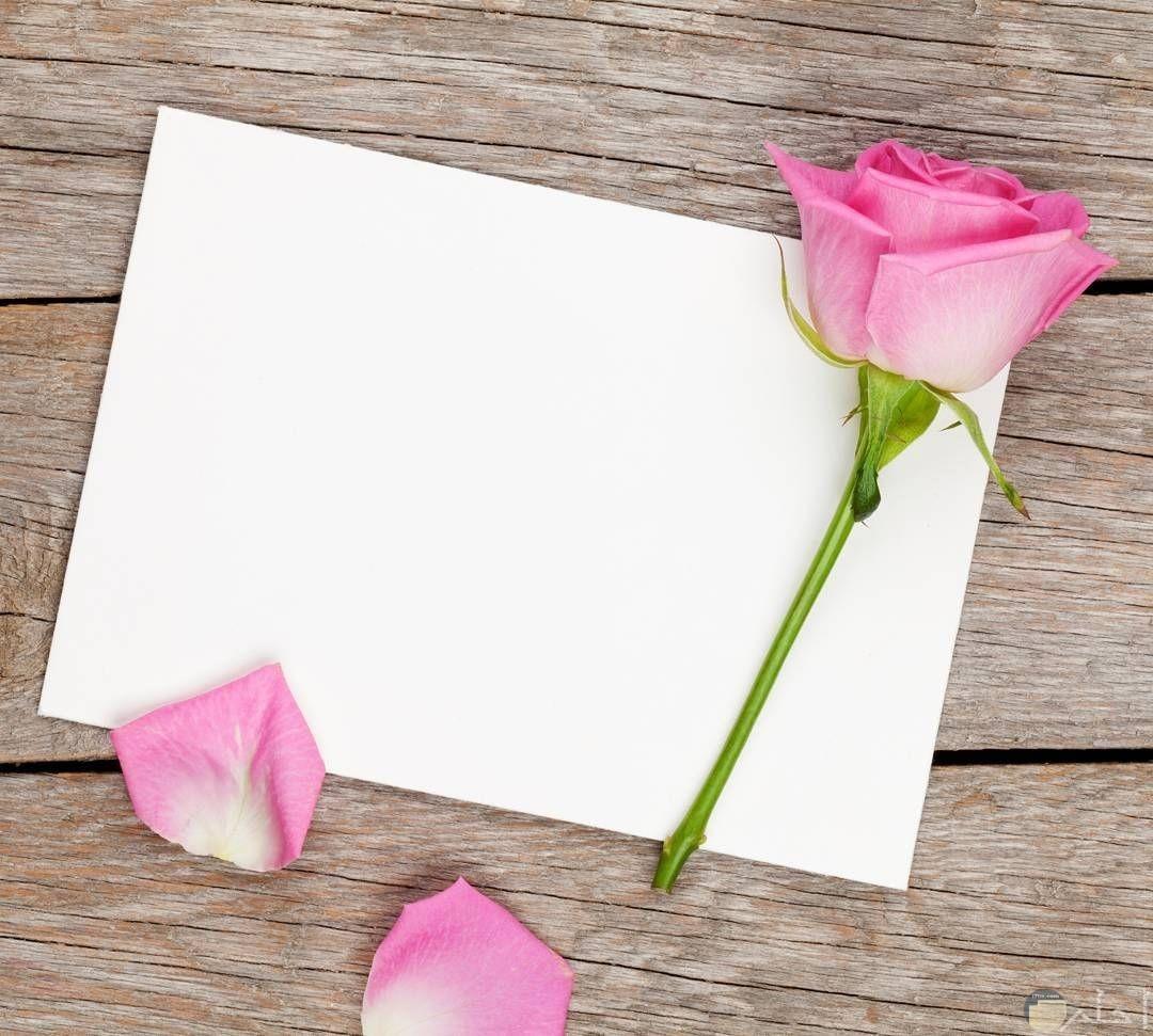 صور خلفيات جميلة للكتابة عليها , صور عليها كلمات مميزة اوي