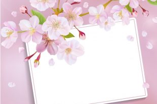 صورة خلفيات جميلة للكتابة عليها , صور عليها كلمات مميزة اوي