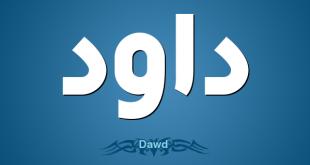 صور ما معنى اسم داوود , تفاصيل لاسم داوود