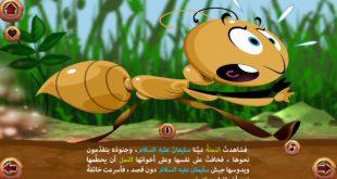 صورة قصة نبينا سليمان , قصة النمله و نبينا سليمان